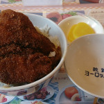 敦賀 ヨーロッパ軒 カツ丼