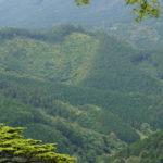 鳳来寺山に登る ~本堂周辺~