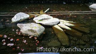 城崎温泉 -昼-